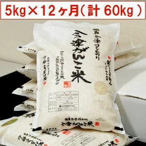 【送料無料】【特別栽培米】29年産米 頒布会 会津がんこ米(会津産コシヒカリ)5kg×12ヶ月