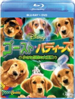 ■ 양화 고스트 バディーズ Blu-ray&DVD12/10/3 발매