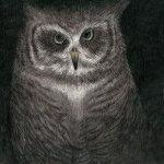 【オリコン加盟店】完全生産限定盤[取]★7インチサイズ紙ジャケット仕様■小沢健二とSEKAI NO OWARI CD【フクロウの声が聞こえる】17/9/6発売【楽ギフ_包装選択】