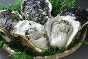 岩牡蠣(大)5個/カキ剥きナイフ・軍手付(83-A)