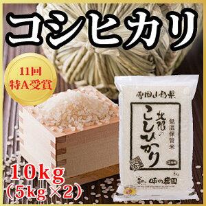 【令和2年度産】山形県産 北限のコシヒカリ 10kg(5kg×2)(10-D)