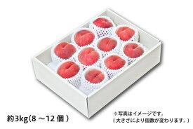 山形の白桃 ギフト用 約3kg/8〜12個(05-E)