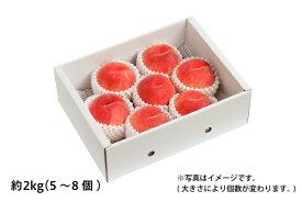 山形の白桃 ギフト用 約2kg/5〜8個(05-F)