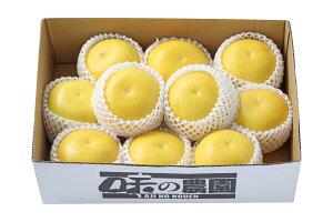 大串さんの土佐文旦 約5kg(87-E)