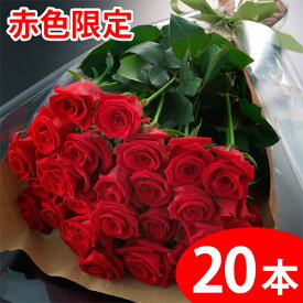 【送料無料】赤いバラの花束ギフト20本 期間限定 ポイント5倍