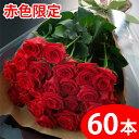 【送料無料】赤いバラの花束ギフト60本