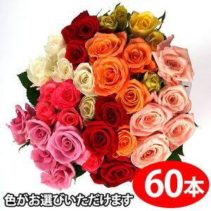 色が選べるバラの花束ギフト60本 送料無料