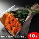 【送料無料】バラの花束ギフト10本
