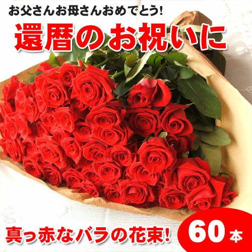 節分大安お届け可能です【送料無料】還暦祝いに赤いバラの花束ギフト60本!生産者直送だからバラの鮮度が違う!還暦の赤い薔薇ならこれ 還暦祝い 花束還暦用 記念日 産地直送の薔薇 生産者直のばら 鮮度の良いバラ