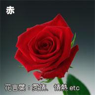 【送料無料】還暦祝いに赤いバラの花束ギフト60本