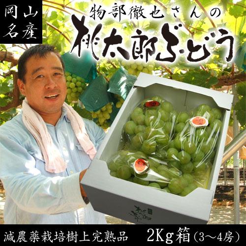 【送料無料】物部さんの桃太郎ぶどう2〜4房2kg箱 05P03Dec16