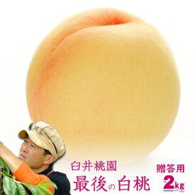 岡山県産白桃 最後の品種 進物用 2Kg 5〜8玉 栽培園限定商品 送料無料 希少品のため収穫予定数量完売と同時に販売終了致します【早期ご予約受付中】 期間設定 ポイント5倍