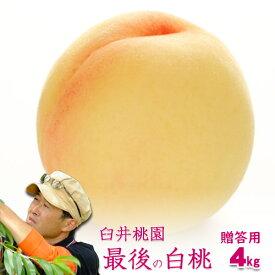 岡山県産白桃 最後の品種 進物用 4Kg 10〜15玉 栽培園限定商品 送料無料 希少品のため収穫予定数量完売と同時に販売終了致します【早期ご予約受付中】 期間設定 ポイント5倍