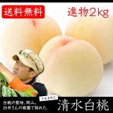 【送料無料】【生産者限定商品】臼井桃園の「清水白桃」進物清水白桃2kg