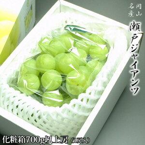 岡山県産 瀬戸ジャイアンツ 贈答用 700g以上房 化粧箱入り 送料無料
