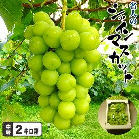 岡山県産 名人のシャインマスカットたっぷり2キロ箱 送料無料 期間限定 ポイント5倍
