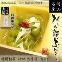 【送料無料】【特撰桐箱】岡山産ハウス桃太郎ぶどう1キロ房箱 05P03Sep16