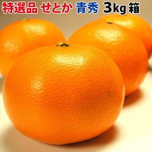 【送料無料】スーパー柑橘せとか特選品3kg【青秀】 期間ポイント5倍 期間限定 ポイント5倍