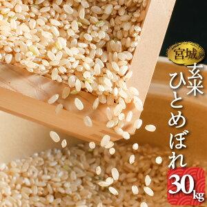 玄米 宮城県産 ひとめぼれ 30kg 1袋 送料無料 令和元年産 お米 検査一等米
