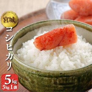コシヒカリ 5kg 宮城県産 令和2年 送料無料(一部除く) 精米 白米