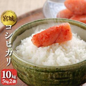コシヒカリ 10kg(5kg2袋) 宮城県産 令和2年 送料無料(一部除く) 精米 白米