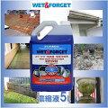 【WET&FORGET】リムーバー  苔・カビ・地衣類・藻類・除去剤 濃縮液5L(希釈液30L分) 漂白剤不使用/こすり洗い不要/すすぎ不要