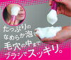 TAUHAUS 熊野刷 (野刷、 化妆刷) 樱桃洗刷 (卷) /P-FW-01-PK