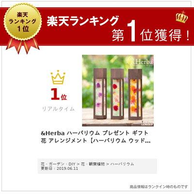 【ハーバ】木枠付ハーバリウムL四角