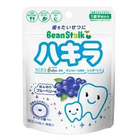 ビーンスターク ハキラ ブルーベリー味 45g /歯みがき/歯磨き  02P03Dec16