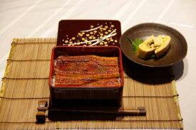 鹿児島産うなぎ蒲焼(大)1尾セット(約170g/尾x1)蒲焼たれ・さんしょう付