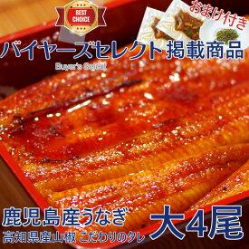 鹿児島産うなぎ蒲焼(大)4尾セット(約170g/尾x4)【数量限定】【父の日】