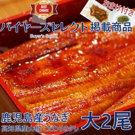 鹿児島産うなぎ蒲焼(大)2尾セット(約170g/尾x2)【数量限定】【父の日】