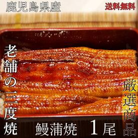 【送料無料】鹿児島産うなぎ蒲焼(大)1尾セット(約170g/尾x1)蒲焼たれ・さんしょう付夏 土用丑 お中元