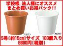 【送料無料】軽くて使いやすい!プラ鉢(プラスチック鉢)5号(直径約15cm) 100個セット 大和プラスチック(株)製品