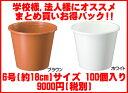 【送料無料】軽くて使いやすい!プラ鉢(プラスチック鉢)6号(直径約18cm) 100個セット 大和プラスチック(株)製品