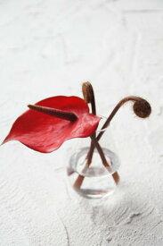 アンスリウム&ファーン(造花)