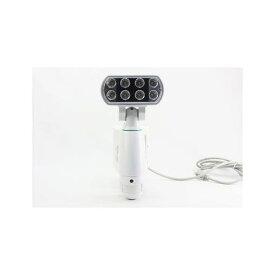 マザーツール MT-SL01 SDカードレコーダー内臓センサーライトカメラ MTSL01 【送料無料】【ポイント5倍】
