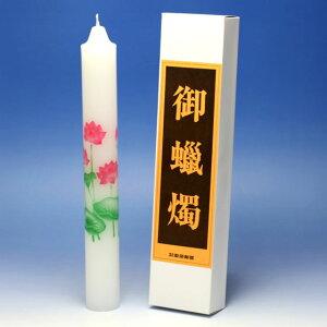 絵ろうそく 御献灯 ごけんとう 100号 2本 蓮 はす 約40時間 東海製蝋 日本製 絵蝋燭 絵ローソク ろうそく ローソク 蝋燭 進物 仏壇 お供え物 お花 絵 喪中見舞い 法要 命日 御供 明り 喪中御見舞