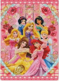 【Disneyグッズ】ディズニープリンセス DC 下敷き S4135571 ピンク色★ディズニープリンセスの下じきB5サイズ/ご入学新学期ご準備/裏面写し絵遊びができます/アリエルラプンチェルベルシンデレラ白雪姫オーロラ姫ジャスミンPrincess★【3cmメール便OK】