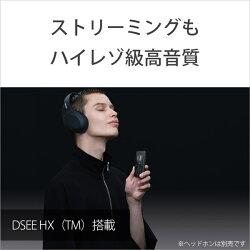 【11/02発売予定】ソニー(SONY)ハイレゾウォークマンA100シリーズ16GBブラック[イヤホン無し]NW-A105BM(NWA105BM)