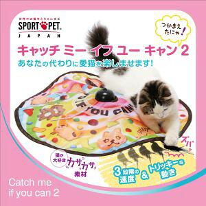 【猫壱 neco ichi】猫壱 キャッチ ミー イフ ユー キャン2