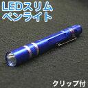 【パイナップル】LEDスリムペンライト ブルー