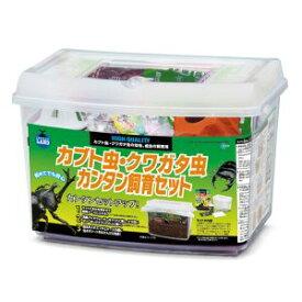 【マルカン MG】マルカン カブト虫 クワガタ虫 カンタン飼育セット