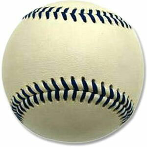 【プロマーク Promark】ウェイトトレーナーボール 160g ホワイト WB-2265
