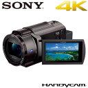ソニー デジタル4Kビデオカメラレコーダー ハンディカム FDR-AX45-TI ブロンズブラウン【送料無料】【KK9N0D18P】