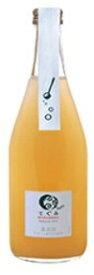 丹波ワインてぐみ プチデラウェア 500ml 白泡 W780