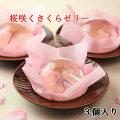 【40代女性】親戚宅への手土産に!オススメの桜スイーツを教えてください。