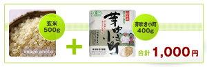 有機米機械乾燥(玄米+芽吹き小町)