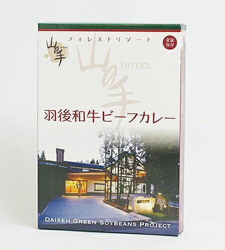 グランドパレス川端 羽後和牛ビーフカレー(山の手ホテルごちそう便)