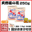 【送料無料】【1回分おまけ付き】天然湯の花 250g袋入り×2個
